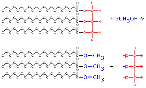 image of transesterification of fatty acid